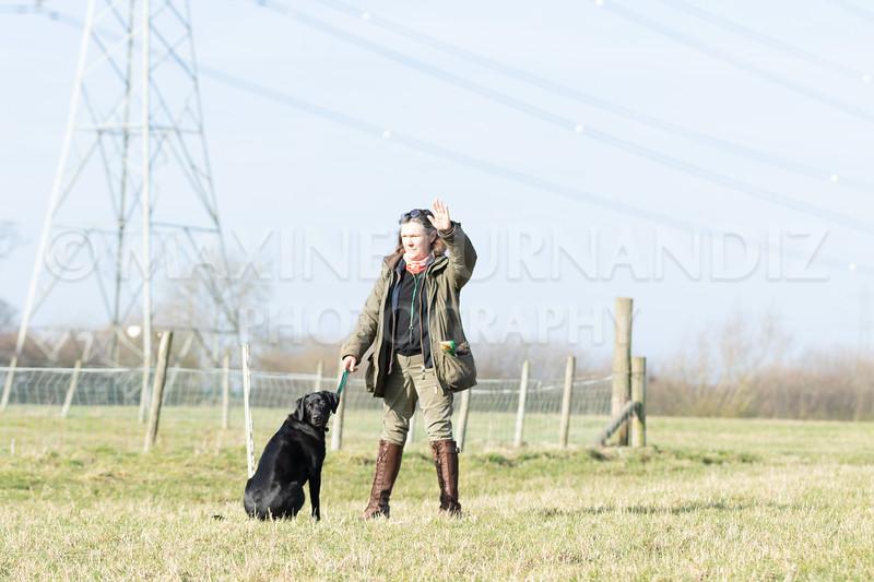Dog Training Novice GD Feb2019-5787.jpg