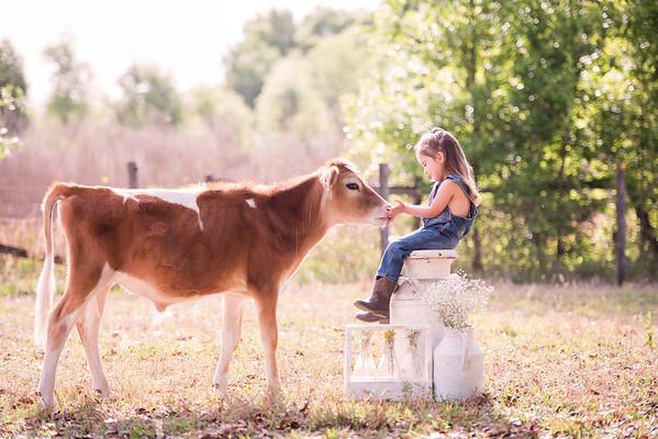 Spring Cows 2019 - Bittner