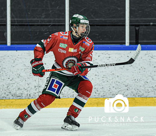 J20 Nationell Södra: Frölunda HC - IF Malmö Redhawks 2020-10-14