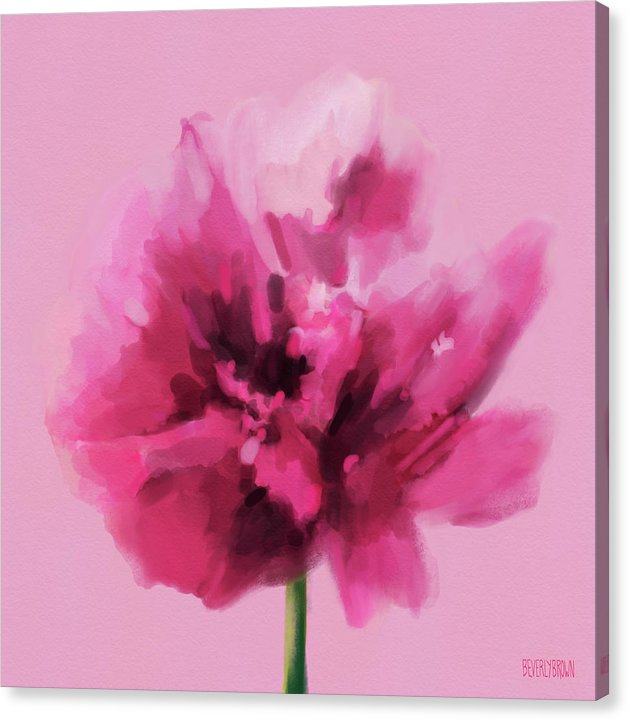 Hot pink carnation floral wall art print on canvas by Beverly Brown - beverlybrown.com