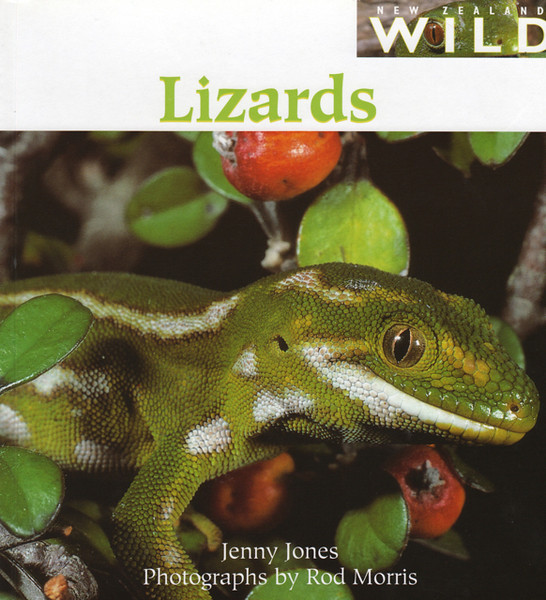 'New Zealand Wild: Lizards' A fantastic book for intermediate readers (age 8+), and a finalist for the 2003 Elsie Locke Award (previously known as LIANZA Young Peoples Non Fiction Award). Unfortunately we have sold out of this title for the time being.