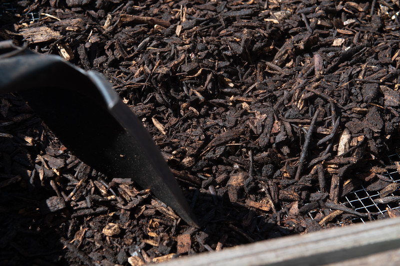 Compost is sifted at the Islander Green Garden.