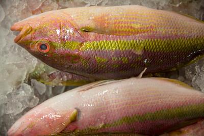 The New Fulton Fish Market, NYC