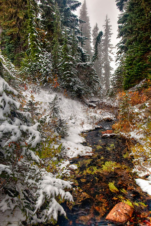 Mt. Rainier Nov. 2011
