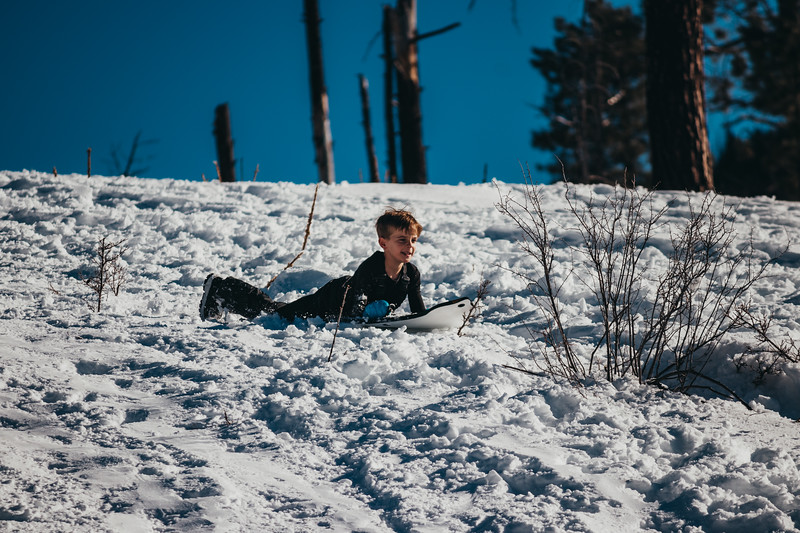 snowMLK-2806.jpg