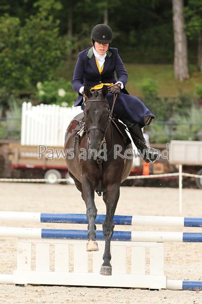 Ladies Handy Hunter Side Saddle Over Fences