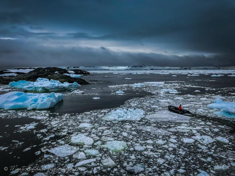 Antarctic-25