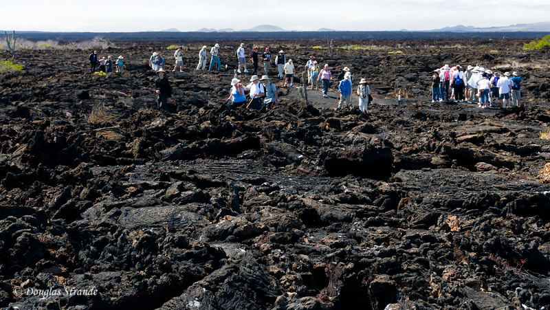 Difficult hiking on the lava at Punta Moreno, Isabela Island