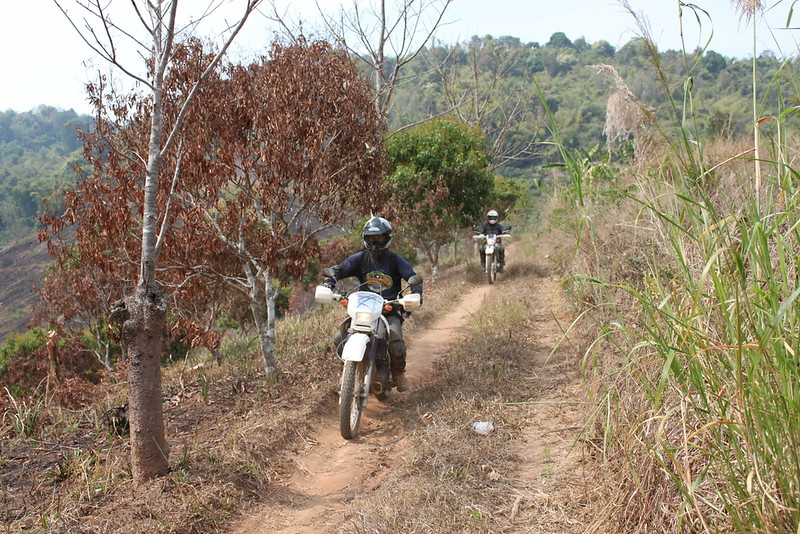 Sa-ngiam and Eak cutting a small path towards Doi Chang