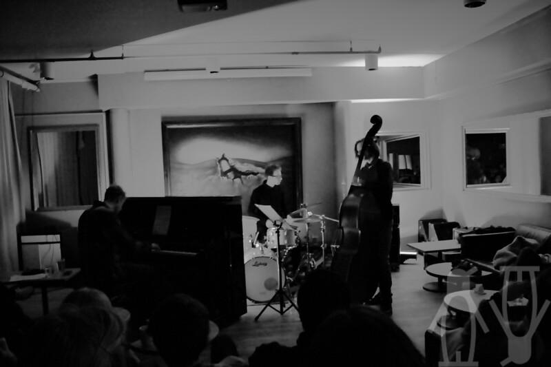 2014.01.24 - Martin Vinje Trio - Lucas Hoeppler - 01.JPG
