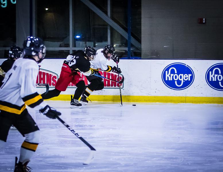 Bruins-42.jpg
