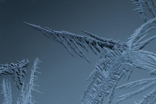 Ice Crystals 2021.02.14