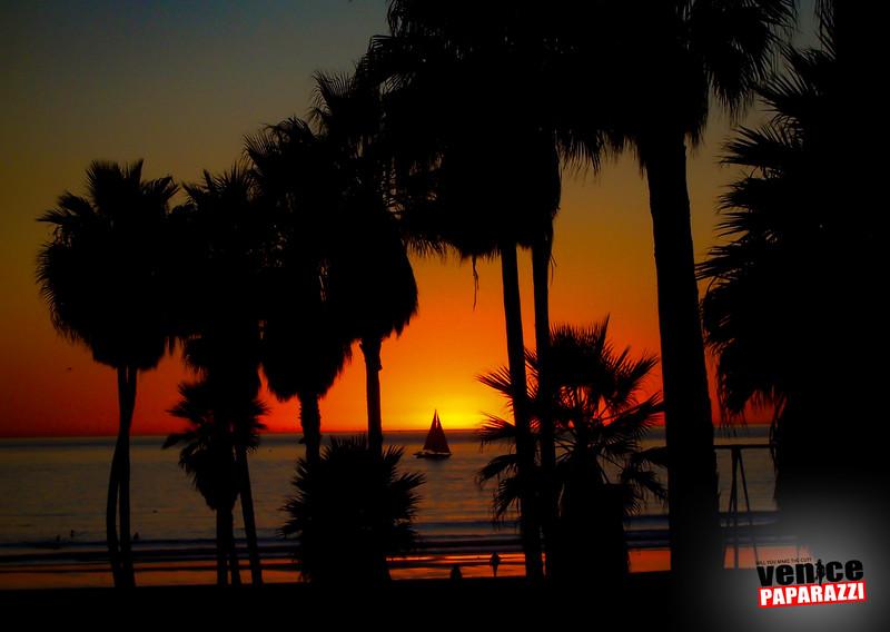 Venice Beach Fun-240.jpg