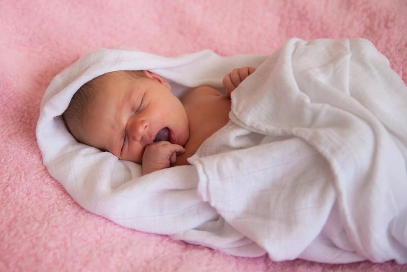 2014.03.30 Whitney Kronforst Newborn Photos 60.jpg