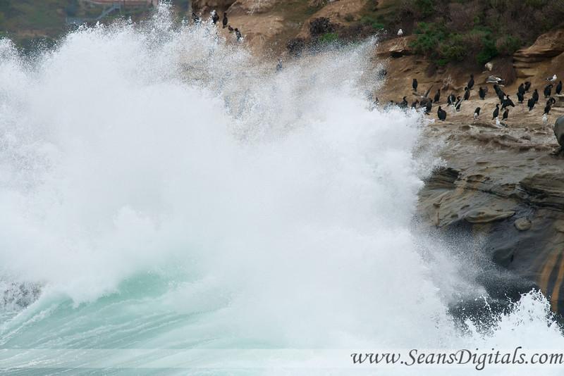 La-Jolla-waves-17.jpg