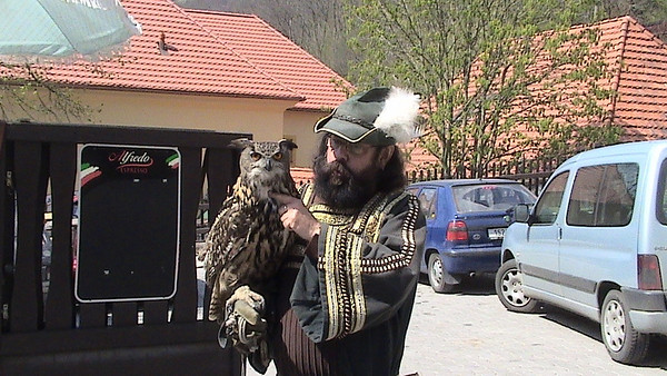 Owls used for hunting