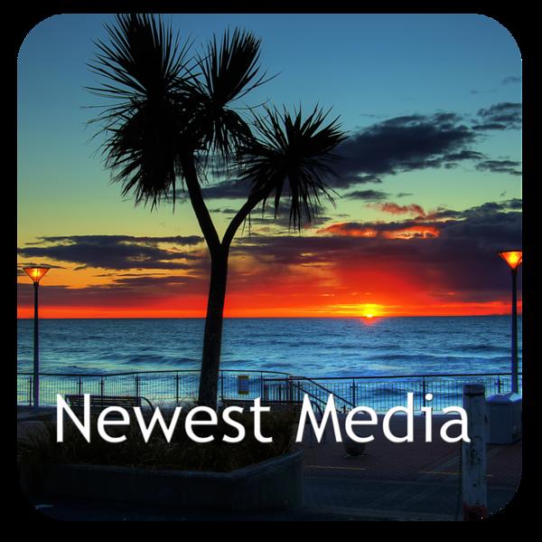 Newest Media.jpg