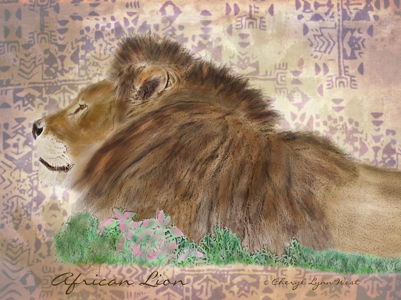 African-Lion-Final.jpg