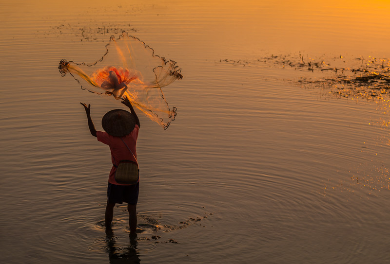 Throwing net at dawn