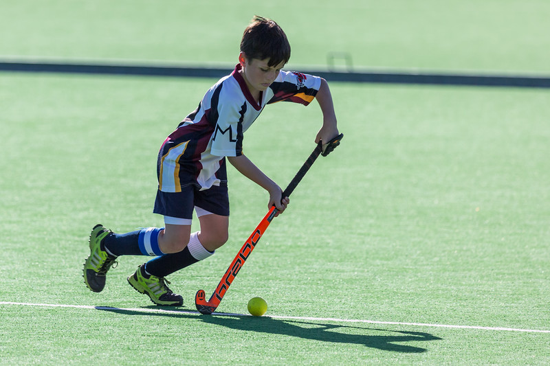 Hockey u12 Mikro vs. Boston