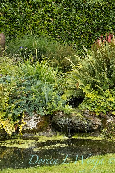 Beechleigh Garden - Jacky O'Leary garden designer_2958.jpg