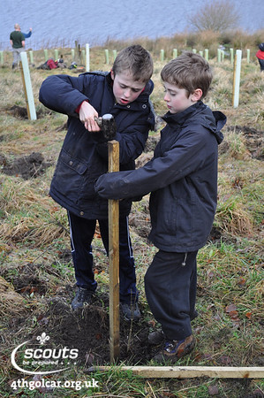 February - Tree Planting