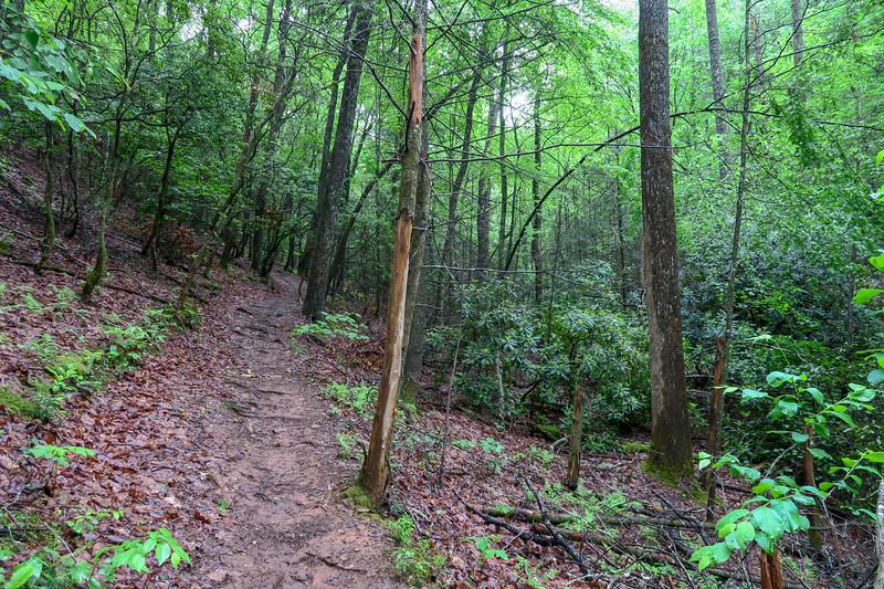 Explorer Loop Trail -- 2,460'