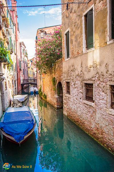 Venice-2011-5505.jpg