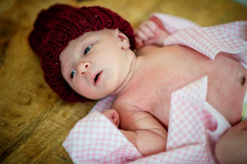 Erica-Agostinelli-newborn-PTP_0973.jpg