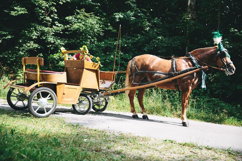 BZLT_Waldhüttenfest_Archiv-10.jpg