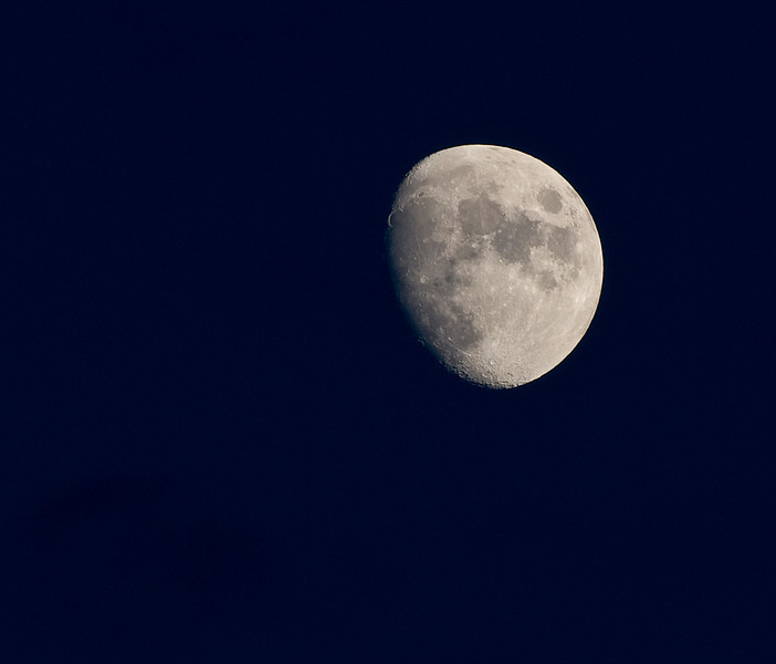 Moon 7-21-10c.jpg