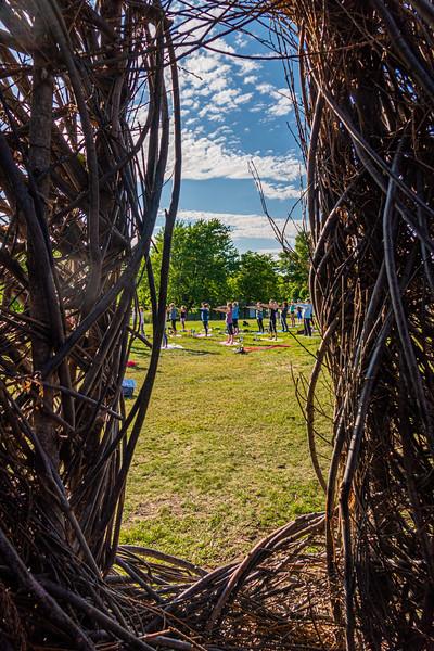 65     1   RobertEvansImagery.com Minnesota Landscape Arboretum June 13th 2019  DSC06091.jpg