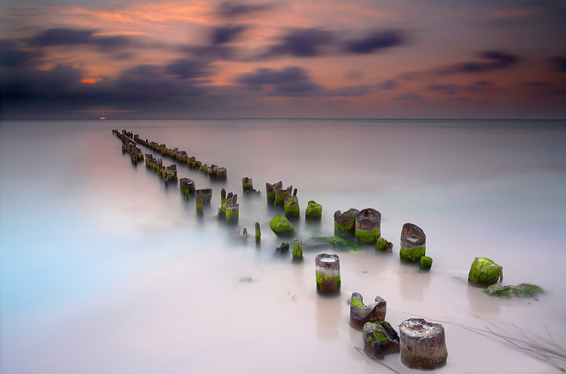 Similar image to 'Exposed, but with a diagonal perspective. Isla Mujeres is a small island just a few miles northeast of Cancun, Mexico. I was told that before the hurricane, these pilings were under many feet of sand and that the beach extended well past the last one seen here.