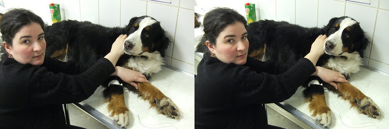 2011-03-20, Sherry in the veterinary clinic (3D)
