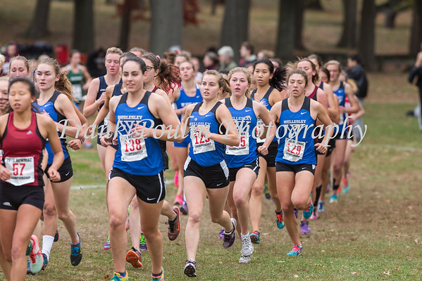 NEWMAC Cross Country Championship 11/1/2015