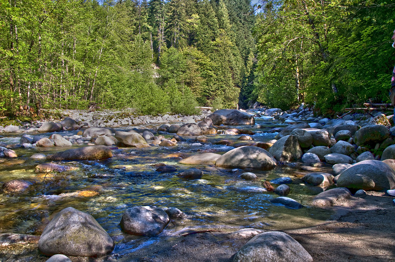 Lynn Canyon creek.  Too cold in May for swimming!
