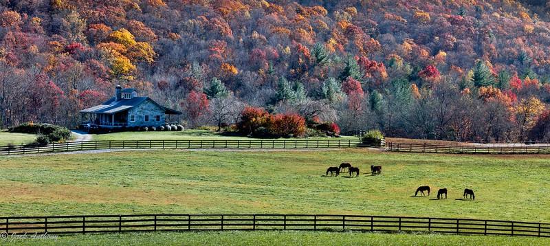Suches, Georgia Farm