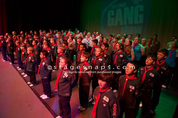 Gang Show 2014