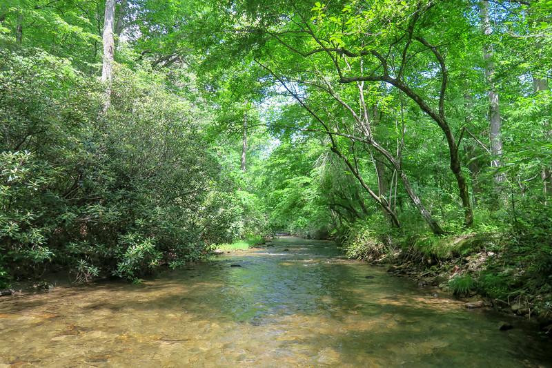 Bradley Creek (Crossing #4) -- 2,270'