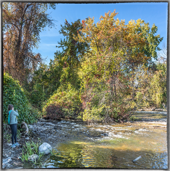 Jessie Photographing Stream Near Mud Lake