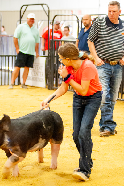 Woodward Summer Classic Swine and Goat Jackpot