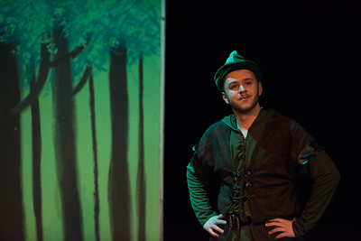 The Somewhat True Tales of Robin Hood