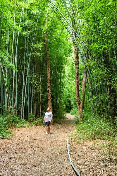 Sami Forzano is seen walking through the bamboo forest at the Oconaluftee Islands Park in Cherokee,  September 25, 2018. (Joseph Forzano / Deep Creek Films)