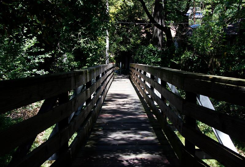creek bridge.jpg