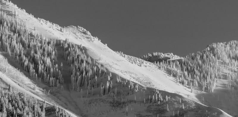Sundance-27.jpg