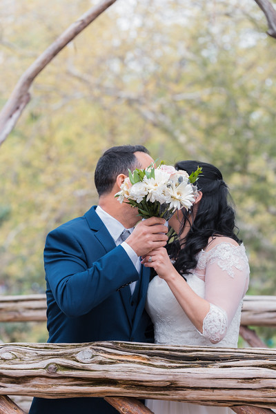 Central Park Wedding - Diana & Allen (157).jpg