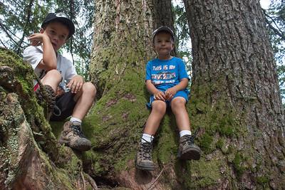 Eli and Ezra Hike Mt. Pilchuck