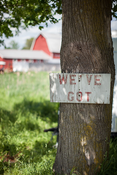 Food in and around Warwick New York.  Signage for a local farm stand in Warwick
