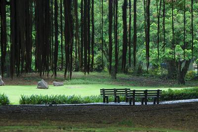 Hawaii (Big Island) -  Lilioukalani Gardens