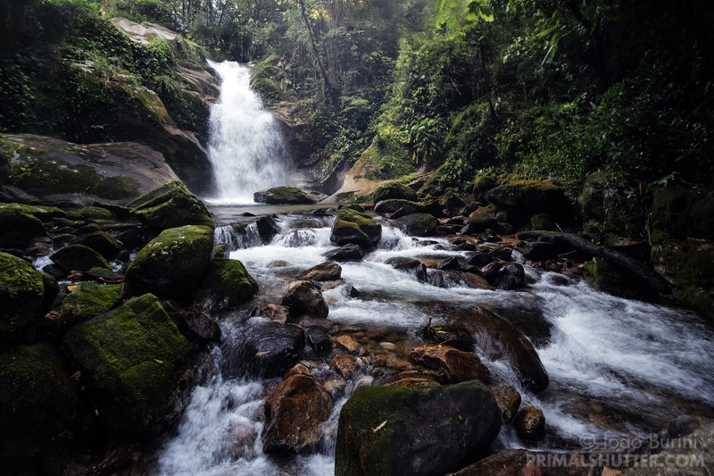 Waterfall in the atlantic forest